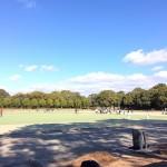 9791 名古屋 庄内緑地公園でホッケー
